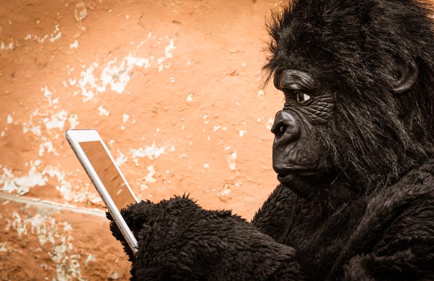 gorilla-computer-mobile