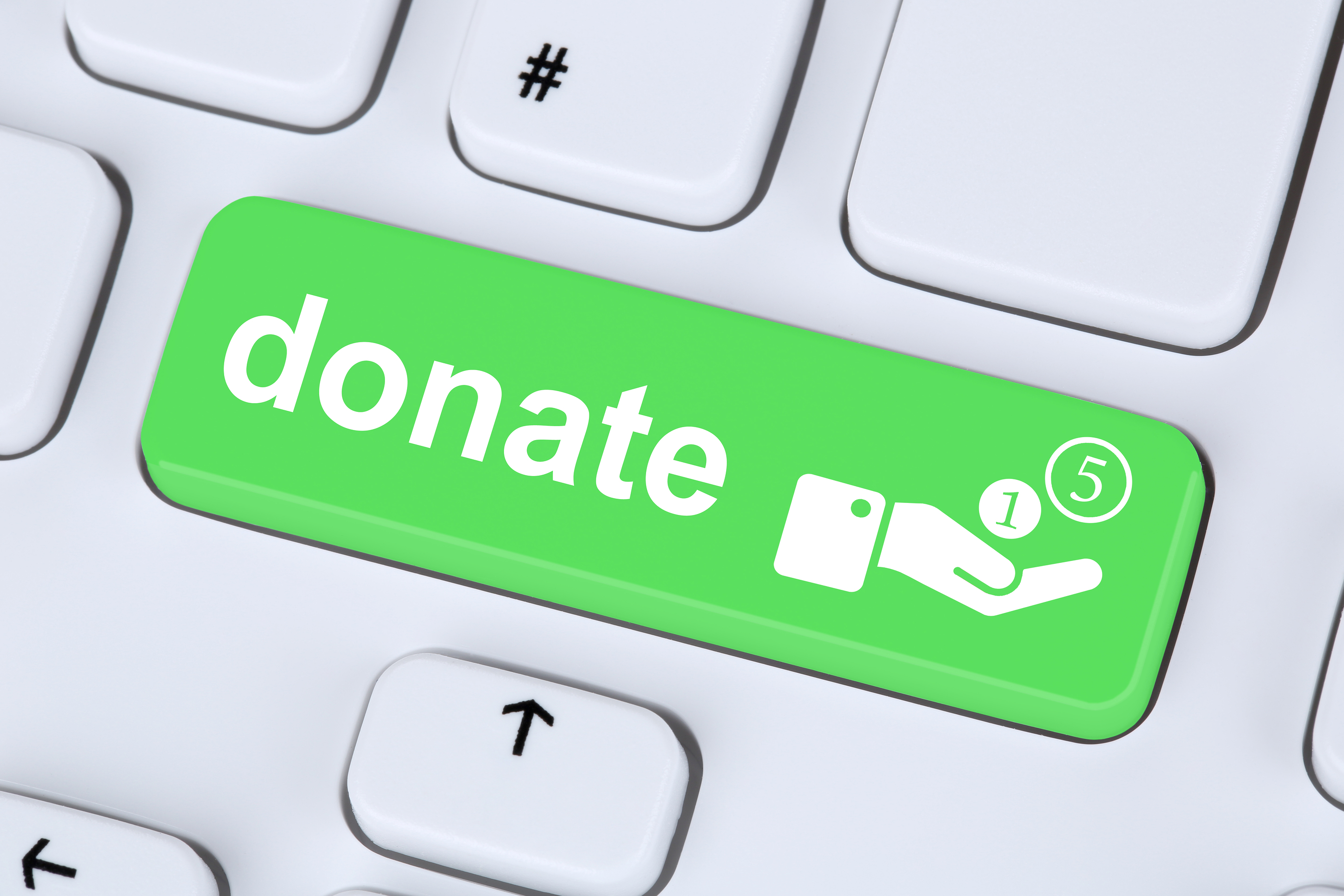 Donate call to action button