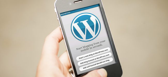 wordpress app user
