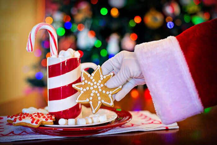 Santa with cookies