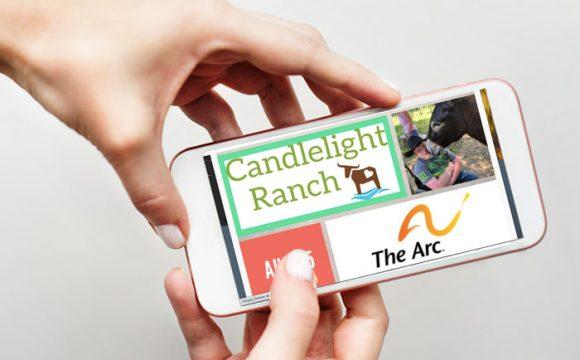 mobile web design example for non profit