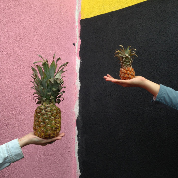 comparing companies concept with pineapples